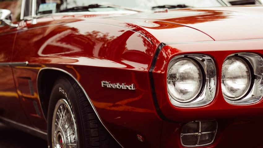 .............firebird-984090_960_720